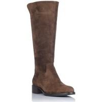 Schoenen Dames Hoge laarzen Alpe 4235 Bruin