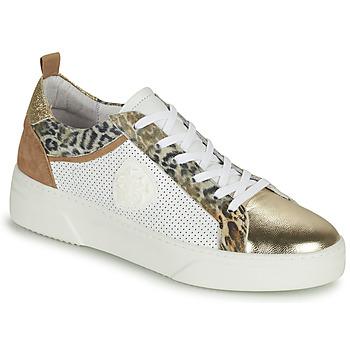 Schoenen Dames Lage sneakers Philippe Morvan SOAPY V3 Wit / Bruin