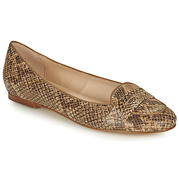 Schoenen Dames Ballerina's Betty London OVINOU Taupe