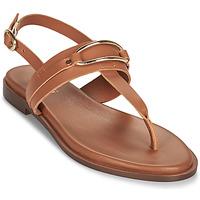 Schoenen Dames Sandalen / Open schoenen Minelli LIZA Bruin