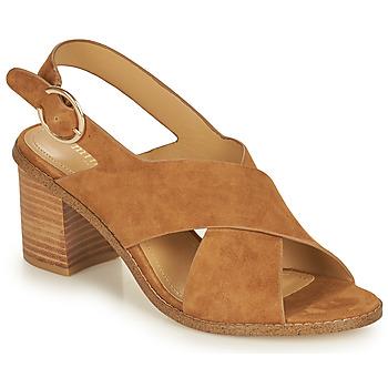 Schoenen Dames Sandalen / Open schoenen Minelli CASIMIERA Bruin