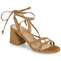 Schoenen Dames Sandalen / Open schoenen Minelli AMELIA Bruin