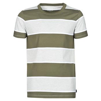 Textiel Heren T-shirts korte mouwen Esprit T-SHIRTS Kaki