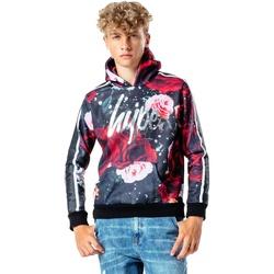 Textiel Jongens Sweaters / Sweatshirts Hype  Veelkleurig