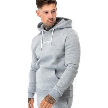 Textiel Heren Sweaters / Sweatshirts Hype  Grijs