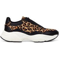 Schoenen Dames Lage sneakers Ed Hardy - Insert runner-wild black/leopard Zwart