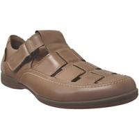 Schoenen Heren Sandalen / Open schoenen Mephisto RAFAEL Bruin leer
