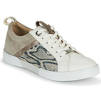 Schoenen Dames Lage sneakers JB Martin GELATO Grijs / Wit