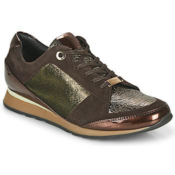 Schoenen Dames Lage sneakers JB Martin VILNES Ebony