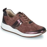 Schoenen Dames Lage sneakers JB Martin KAP Poeder