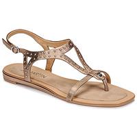 Schoenen Dames Sandalen / Open schoenen JB Martin ALANIS Metaal / Steen