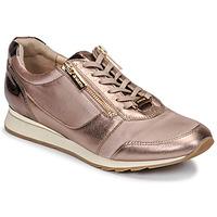 Schoenen Dames Lage sneakers JB Martin VERI Blush