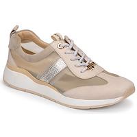 Schoenen Dames Lage sneakers JB Martin KAPY Grijs
