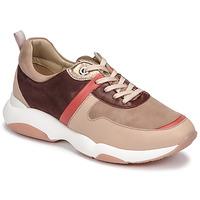 Schoenen Dames Lage sneakers JB Martin WILO Roze