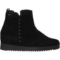 Schoenen Dames Laarzen IgI&CO 6155033 Zwart