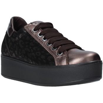 Schoenen Dames Lage sneakers IgI&CO 6163211 Anderen