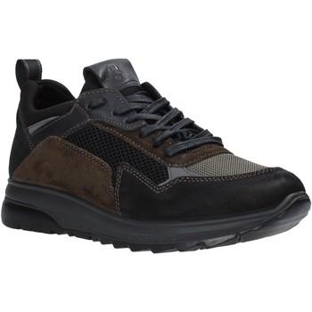 Schoenen Heren Lage sneakers IgI&CO 6139000 Zwart