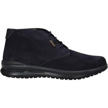 Schoenen Heren Laarzen Valleverde VL53823 Blauw