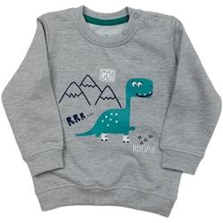 Textiel Kinderen Sweaters / Sweatshirts Losan 027-6652AL Grijs