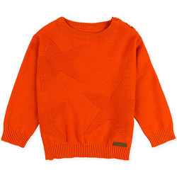 Textiel Kinderen Truien Losan 027-5653AL Oranje