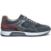 Schoenen Heren Lage sneakers NeroGiardini I001721U Blauw