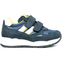 Schoenen Kinderen Lage sneakers NeroGiardini I023910M Blauw