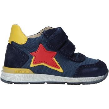 Schoenen Kinderen Sneakers Falcotto 2015450 02 Blauw
