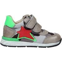 Schoenen Kinderen Sneakers Falcotto 2015450 01 Grijs