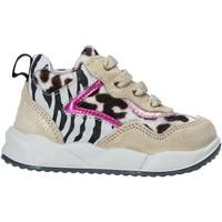 Schoenen Kinderen Sneakers Falcotto 2015423 02 Goud