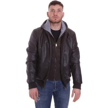 Textiel Heren Wind jackets Roberto Cavalli FST407 Bruin