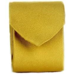 Textiel Heren Stropdassen en accessoires Michi D'amato CRAVATTA 002 Yellow