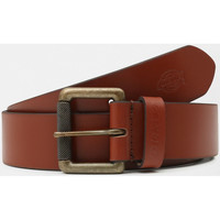 Accessoires Heren Riemen Dickies South shore leather belt Bruin
