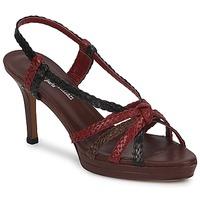 Schoenen Dames Sandalen / Open schoenen Stéphane Kelian PRISCILLE Bruin / Rood