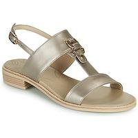 Schoenen Dames Sandalen / Open schoenen NeroGiardini PLUIE Goud