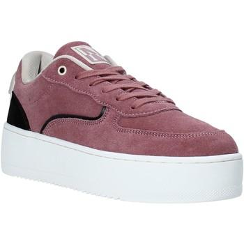 Schoenen Dames Sneakers Napapijri NA4F8M Roze
