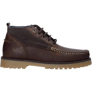 Schoenen Heren Sandalen / Open schoenen Docksteps DSE106031 Bruin