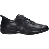 Schoenen Heren Sneakers Docksteps DSM105001 Zwart