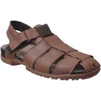 Schoenen Heren Sandalen / Open schoenen Mephisto BASILE Bruin leer