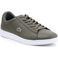 Schoenen Heren Lage sneakers Lacoste 7-33SPM10373T2 olive green