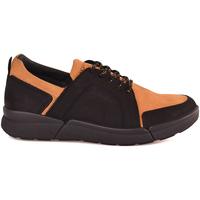 Schoenen Heren Lage sneakers IgI&CO 2126333 Zwart