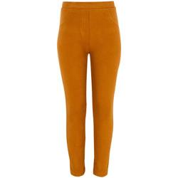 Textiel Meisjes Leggings Losan 024-6004AL Bruin