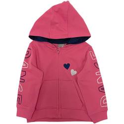 Textiel Meisjes Sweaters / Sweatshirts Losan 026-6653AL Roze