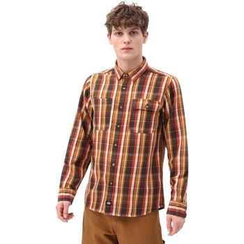 Textiel Heren Overhemden lange mouwen Dickies DK0A4X5LBD01 Bruin
