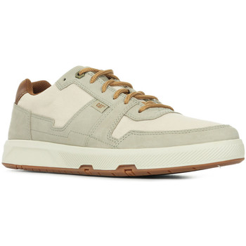 Schoenen Heren Lage sneakers Caterpillar Line Up Beige