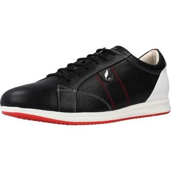 Schoenen Heren Lage sneakers Geox D AVERY Zwart