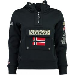 Textiel Dames Sweaters / Sweatshirts Geographical Norway  Blauw