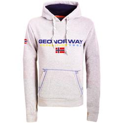 Textiel Heren Sweaters / Sweatshirts Geographical Norway  Grijs