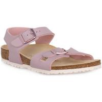 Schoenen Kinderen Sandalen / Open schoenen Birkenstock RIO LAVENDER BLUSH CALZ S Grigio