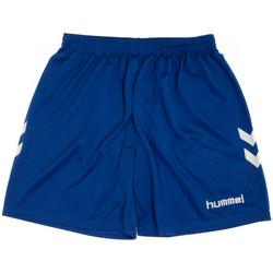 Textiel Heren Korte broeken / Bermuda's Hummel  Blauw