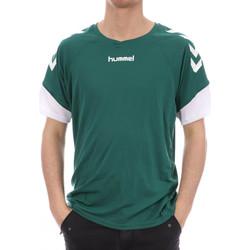Textiel Heren T-shirts korte mouwen Hummel  Groen